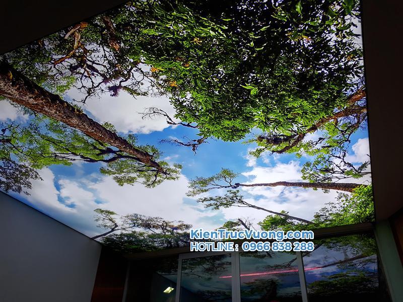 Thi công trần nhà 3d Bà Rịa Vũng Tàu